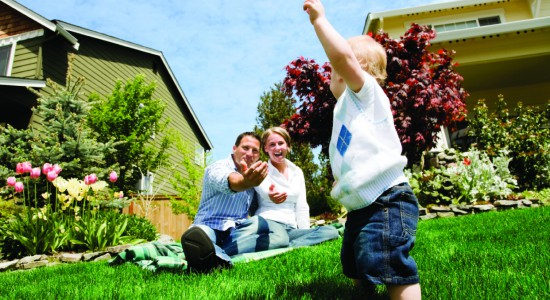 residential atlanta lawn care services, inc lawn maintenanceresidential lawn care and landscaping